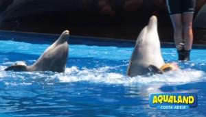 Aqualand-CostaAdeje-Show-Delfines-06