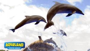 Aqualand-CostaAdeje-Show-Delfines-08